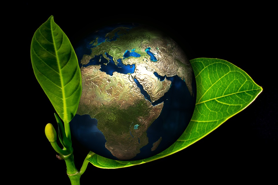 earthglobal green_da Pixabay