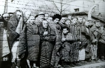800px-Auschwitz_Liberated_January_1945