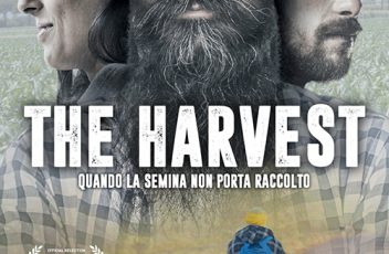 THE HARVEST_VERTICALE